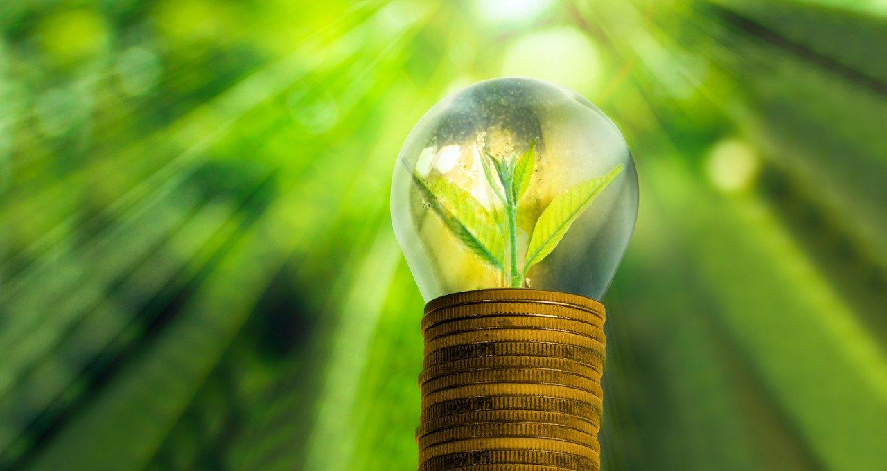Diplomado en Gestión de Energías Renovables No Convencionales