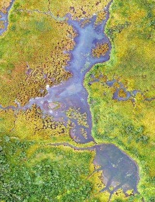 Facultad de Ingeniería y Ciencias administrará plataforma de datos satelitales abiertos